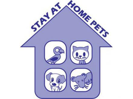 Stay At Home Pets