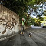 Man walking dog near fish sculpture