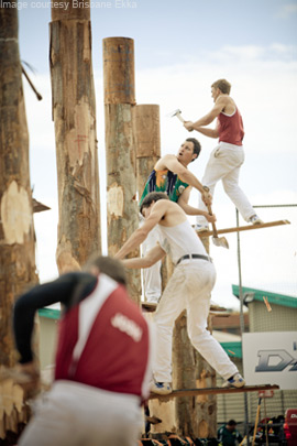 Wood chopping competition at Ekka