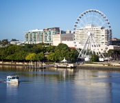 Brisbane City Full Day Sightseeing Tour